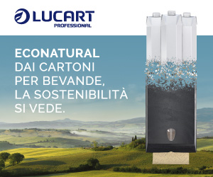 Lucart Econatural - Dispenser carta asciugamani
